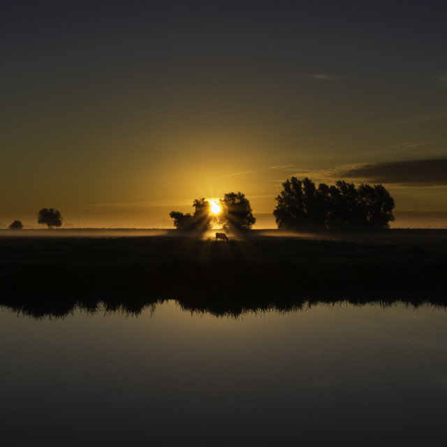 """""""Dawn over the fens, Ely, Cambridgeshire"""" stock image"""