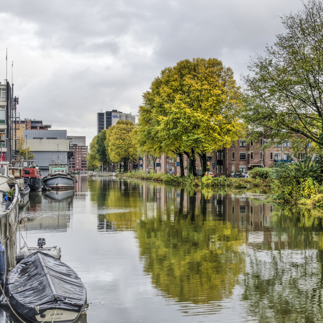 """""""Rotterdam Buizengat canal in autumn"""" stock image"""