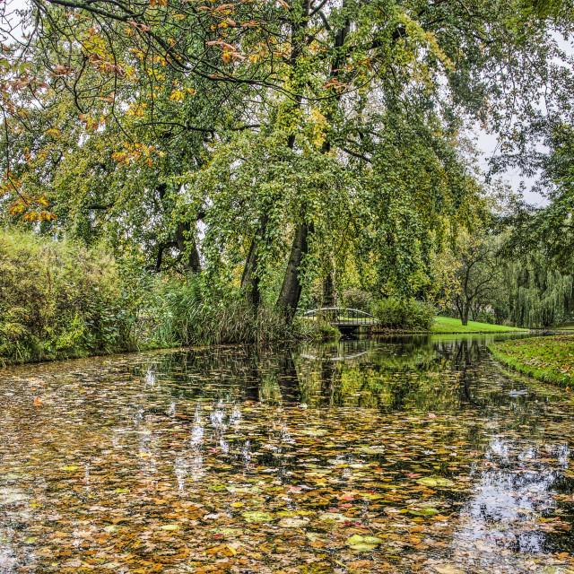 """Rotterdam Zuiderpark in autumn"" stock image"