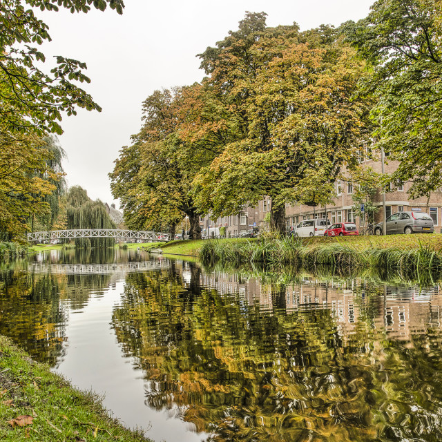 """Rotterdam Bergsingel canal in autumn"" stock image"