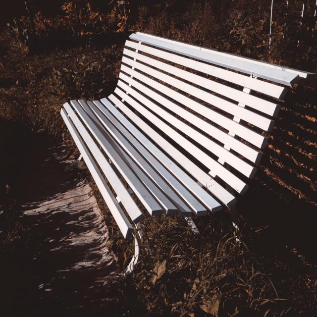 """Garden Bench II"" stock image"
