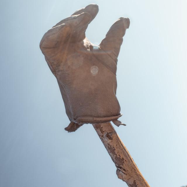 """Glove I"" stock image"