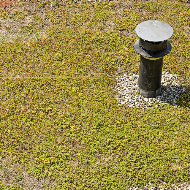 """""""Vegetated roof with gravel and chimney"""" stock image"""