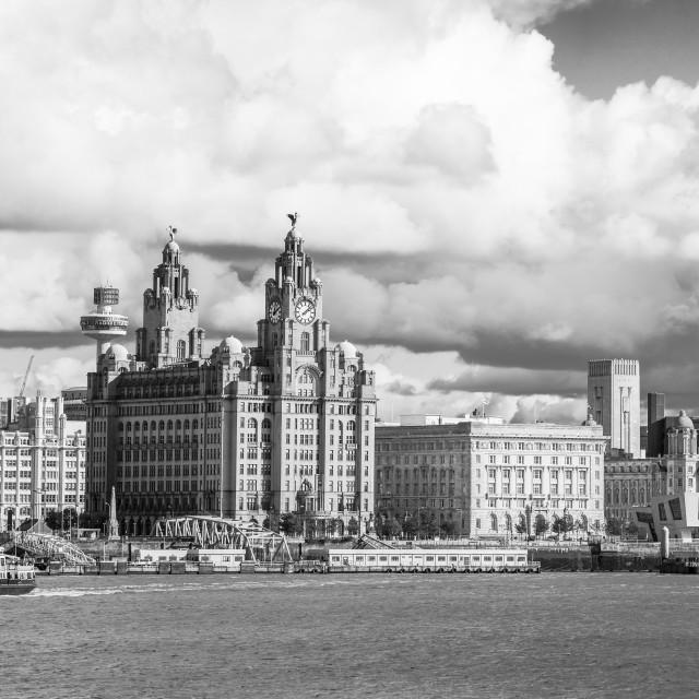 """Royal Iris crossing the River Mersey"" stock image"