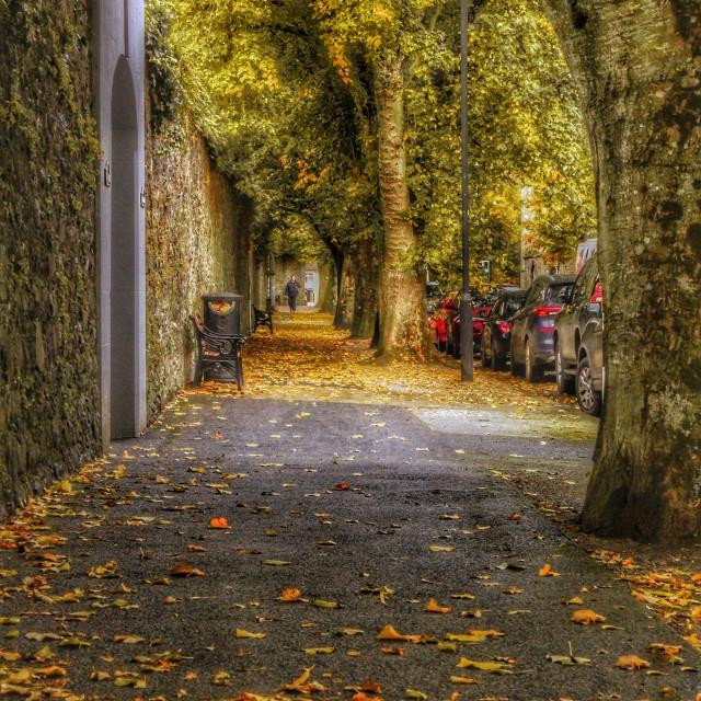 """Kilkenny City"" stock image"