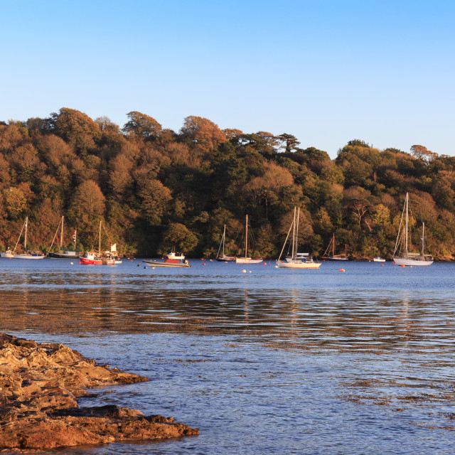 """""""Evening sun, St. Mawes, Cornwall"""" stock image"""