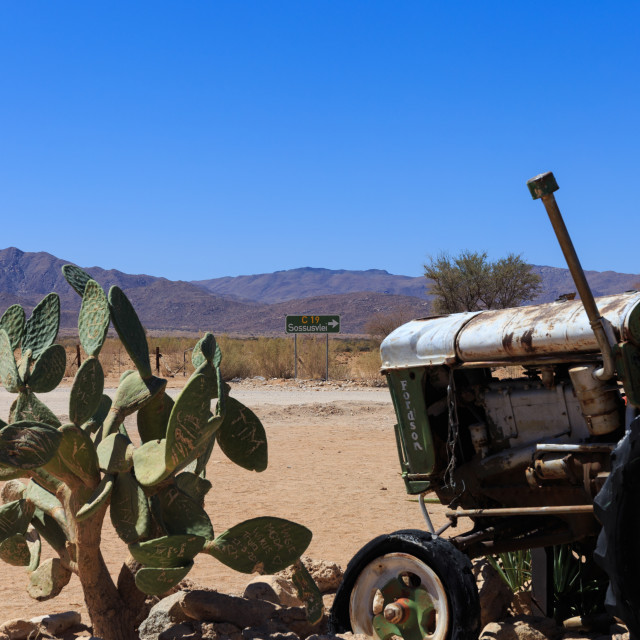 """""""Old tractor and cactus at Solitare, Namibia"""" stock image"""