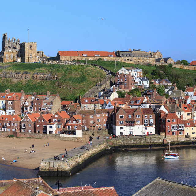 """""""Whitby town and Abbey from view point."""" stock image"""