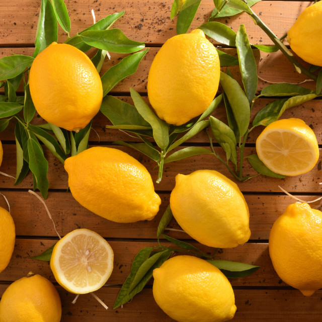"""Group picked organic farming lemons on wood table top"" stock image"