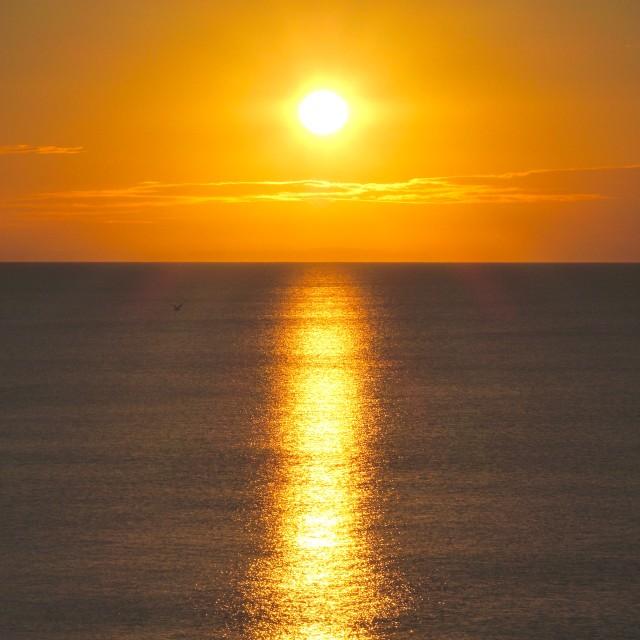 """Golden Sunrise ( Square Format )"" stock image"