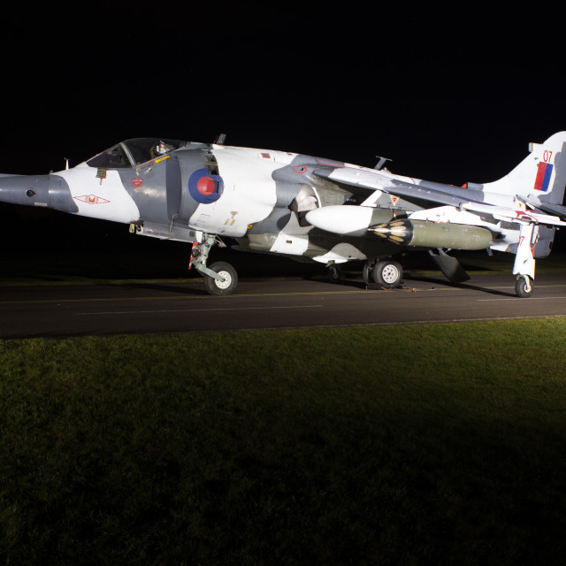 """""""Harrier by night."""" stock image"""