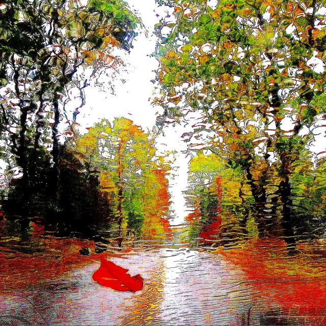 """Rainy Autumn Drive"" stock image"