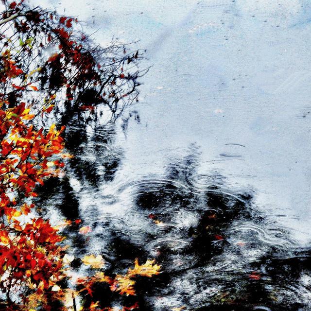 """""""Fall Foliage Reflections"""" stock image"""