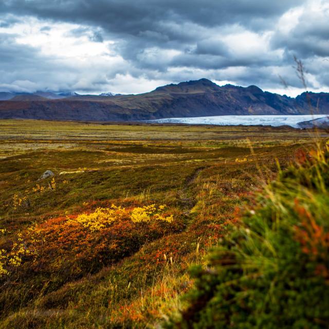 """Trails near Vatnajokull, Iceland"" stock image"