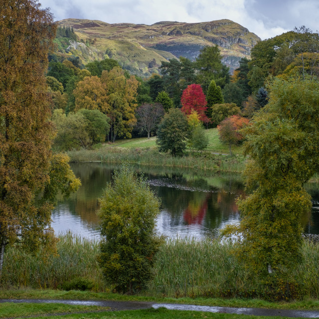 """Airthrey loch with Autumn colors"" stock image"