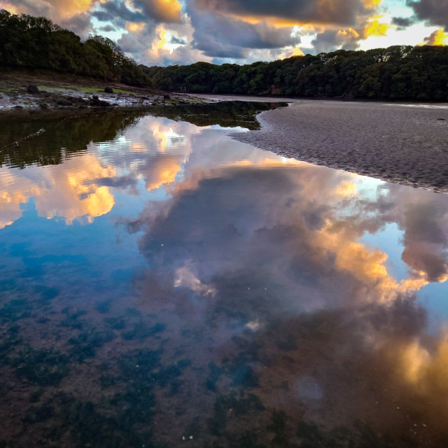 """""""Estuary relections"""" stock image"""
