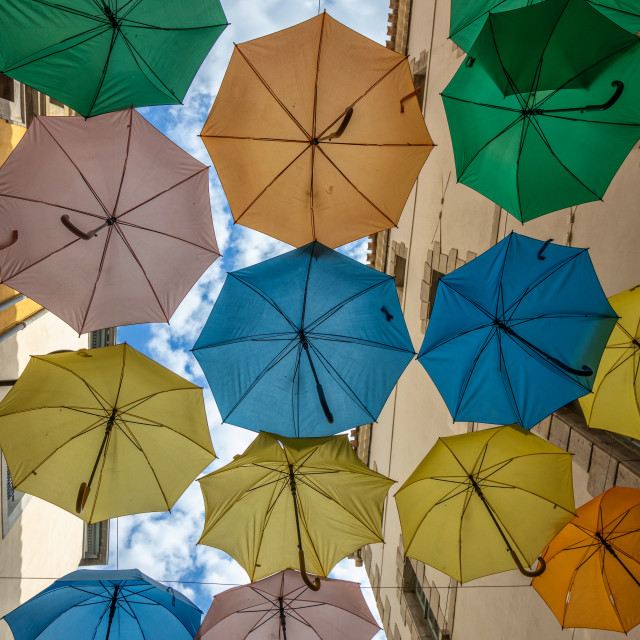 """""""Colorful umbrellas cover a shopping street in Carcassonne, Aude, Occitanie, France"""" stock image"""