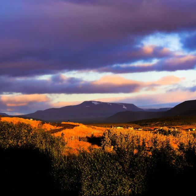 """""""Sunset over Reykholt Iceland"""" stock image"""