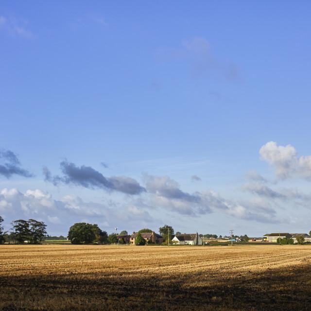 """Newly cut arable field"" stock image"