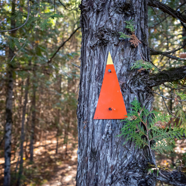 """Trail marker points straight ahead"" stock image"