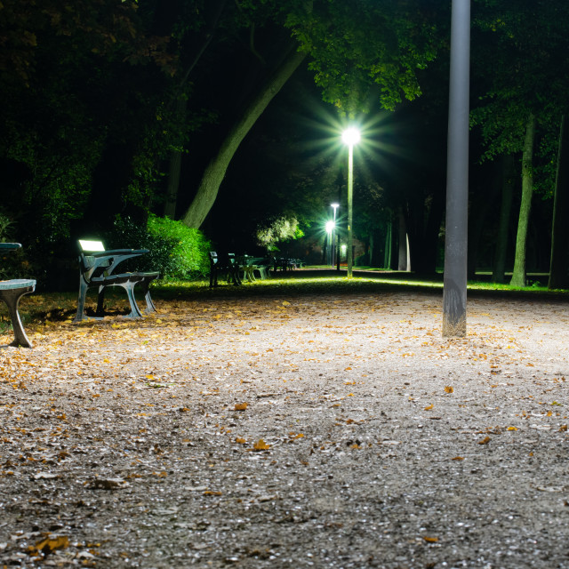 """""""A night in a park"""" stock image"""