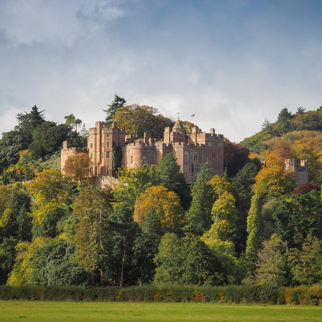 """""""Dunster Castle - Somerset"""" stock image"""