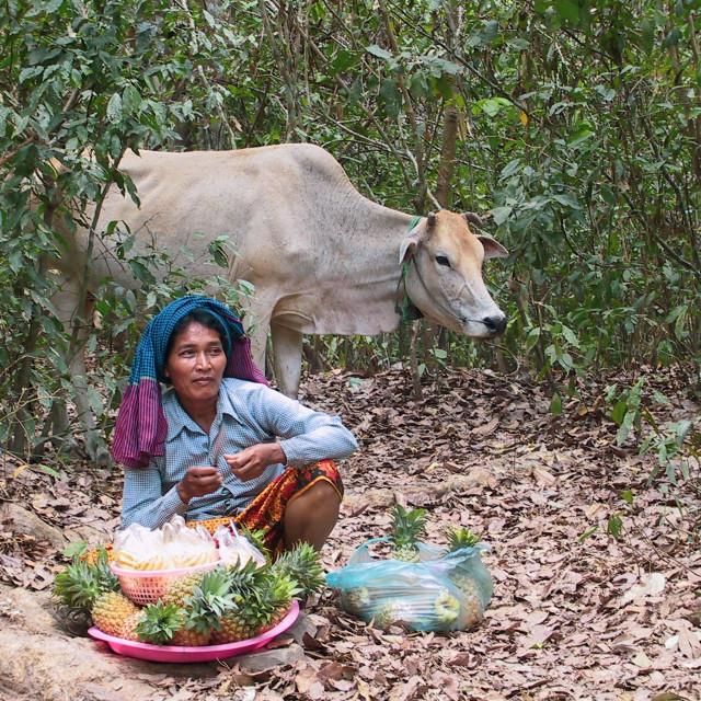 """Fruit Seller in Cambodia"" stock image"