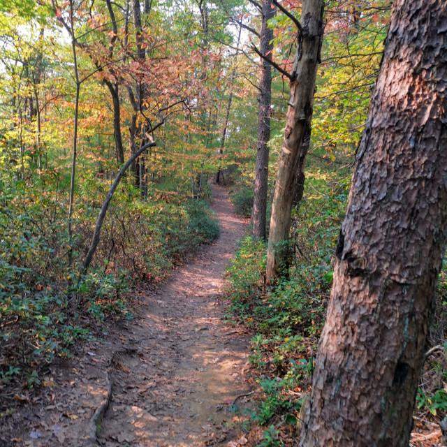 """Rockbridge Trail at Sunset"" stock image"