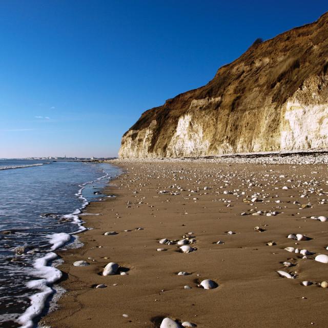 """Washed Beach"" stock image"