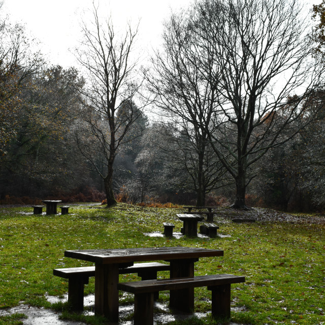 """""""Winter Tables"""" stock image"""