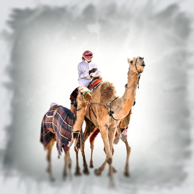 """""""The Desert Journey"""" stock image"""