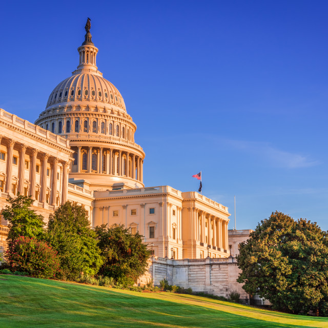 """""""Washington DC, United States of America - US Capitol"""" stock image"""
