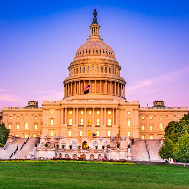 """""""Washington, USA - United States of America Capitol in District C"""" stock image"""