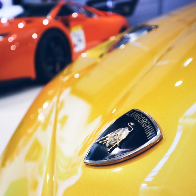 """Lamborghini Diablo"" stock image"