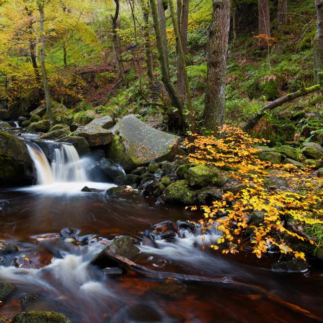 """Autumn Cascade"" stock image"