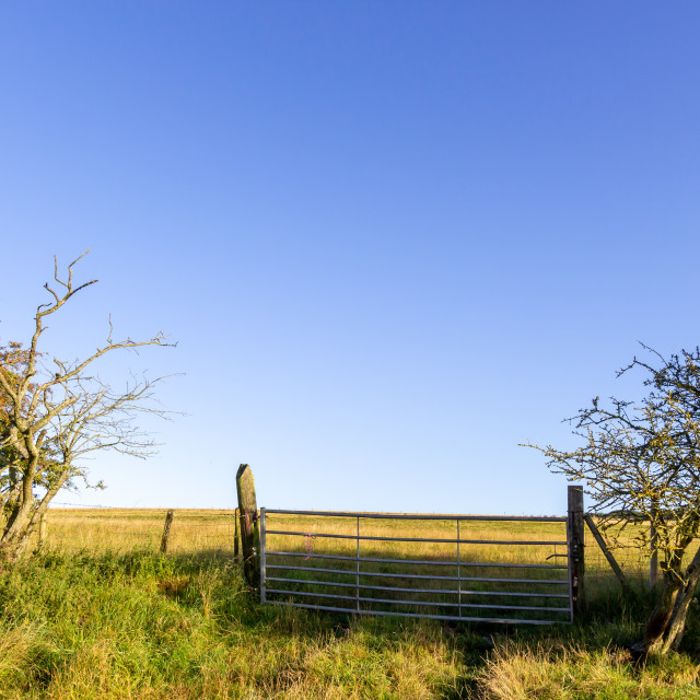 """Closed metal gate at the entrance to a field"" stock image"
