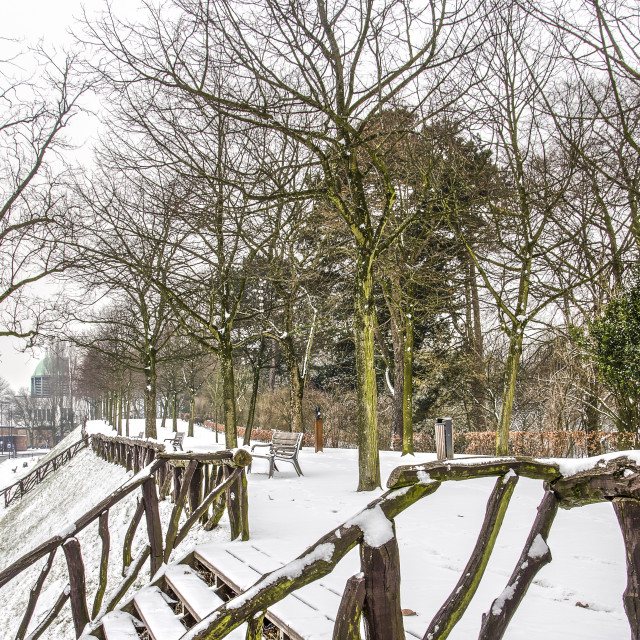 """""""Snow at the Park"""" stock image"""