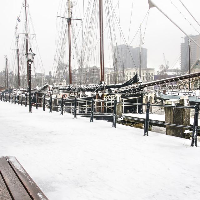 """""""Veerhaven marina in winter"""" stock image"""
