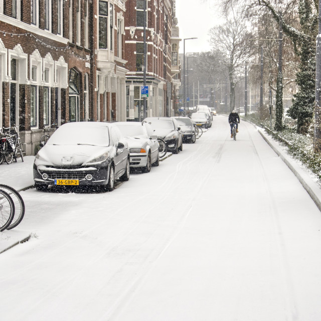 """""""City street in a snowstorm"""" stock image"""