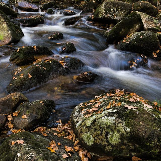 """""""Aune rapids"""" stock image"""