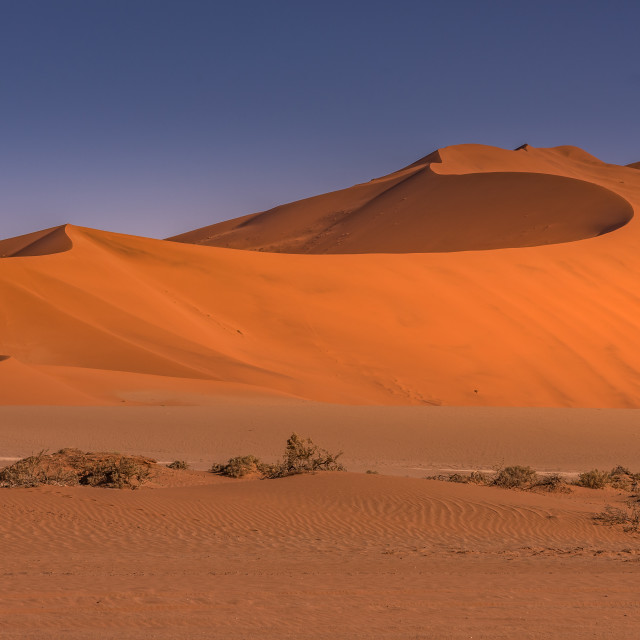 """Sand Dunes , Sossusvlei, Namibia-saturated"" stock image"