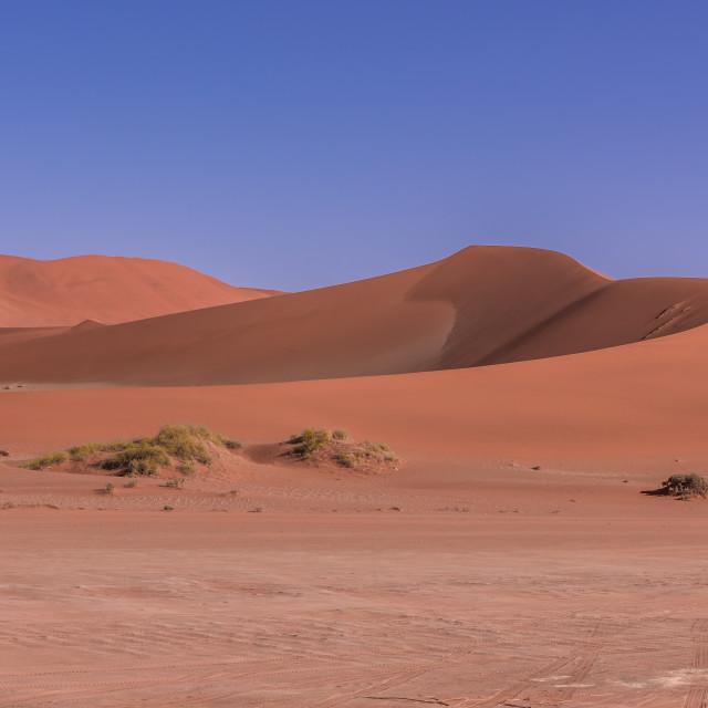 """Sand Dunes , Sossusvlei, Namibia"" stock image"