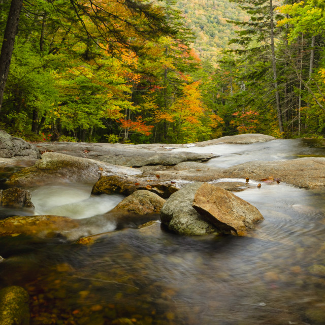 """""""Autumn colors over a flowing creek"""" stock image"""