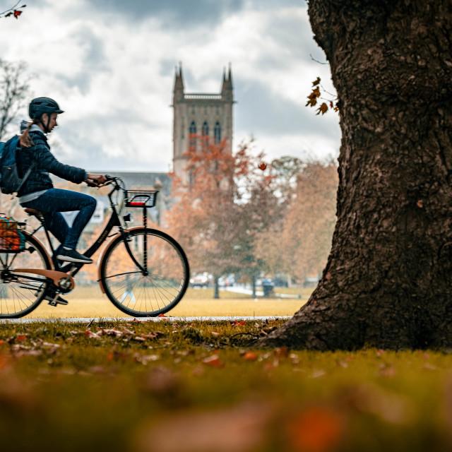 """Rainy Autumnal day from Jesus Green, Cambridge UK."" stock image"