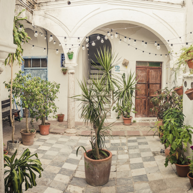 """""""Andalusian courtyard patio"""" stock image"""
