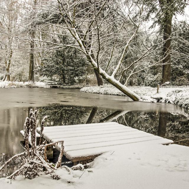"""Tranquility in Schoonoord Park"" stock image"