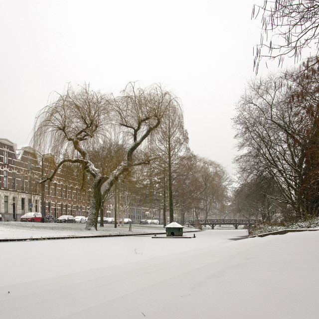 """""""Snow-covered canal in Rotterdam"""" stock image"""