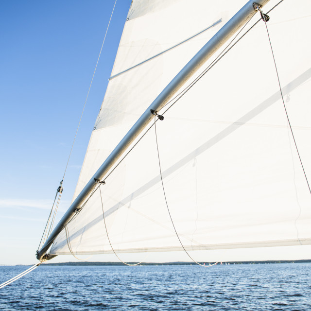 """Looking Out Minimal White Sail against Blue Sky and horizon"" stock image"