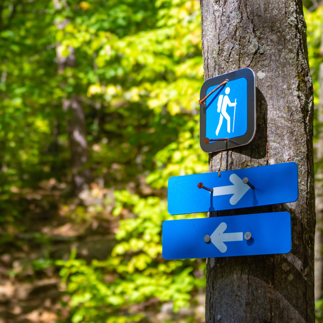 """""""Arrow Markers on a Trail Point Directions"""" stock image"""