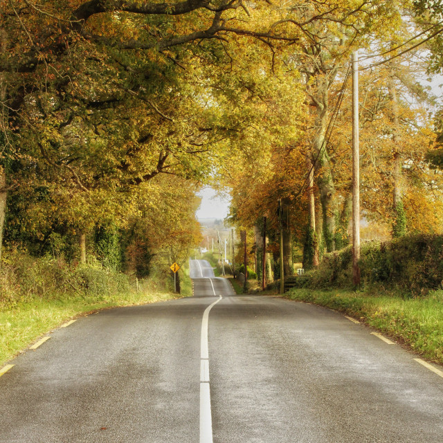 """""""The long road."""" stock image"""
